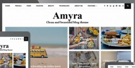 WP-OnlineSupport-Amyra-Theme