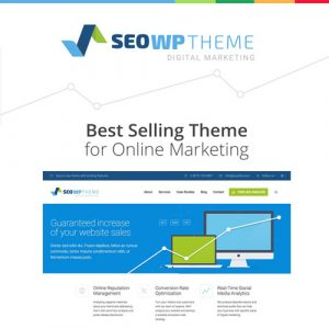 SEO WP: Digital Marketing Agency & Social Media Company Theme